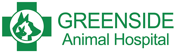 Greenside Animal Hospital - Grooming Services